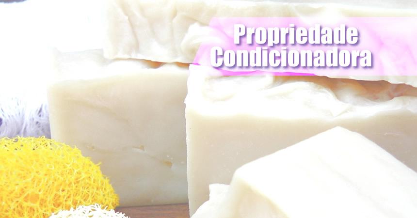 Propriedade Condicionadora - Fórmula de Sabão Artesanal