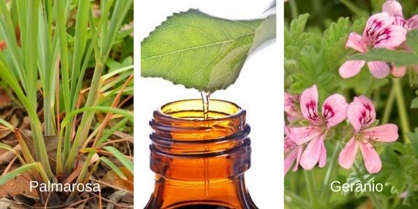 óleo-essencial-sabonete-rosa