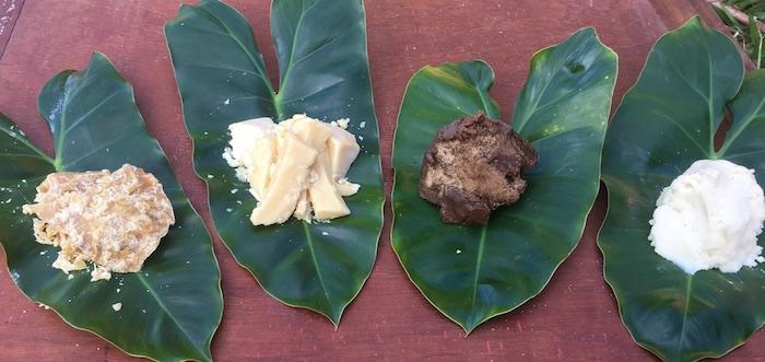 manteigas exóticas Amazônia