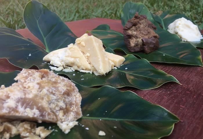 manteigas exóticas da Amazônia